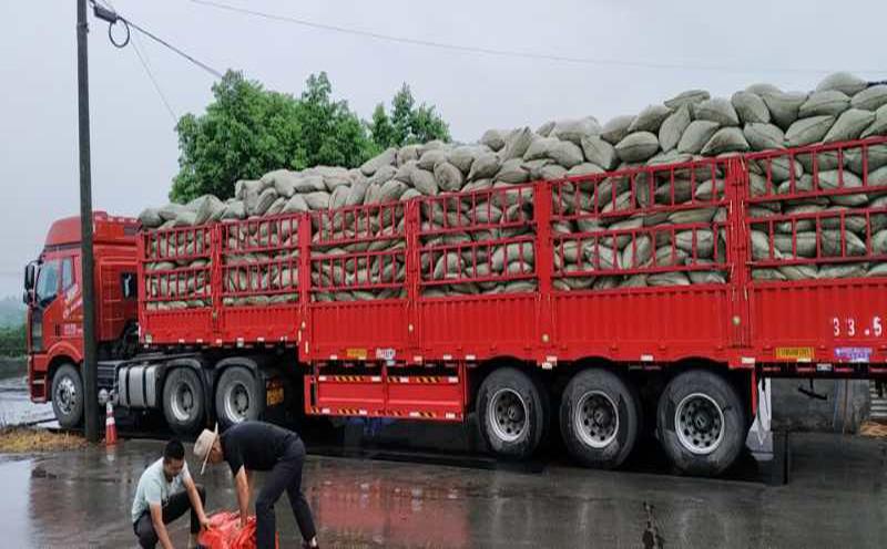 刘女士在云南有机肥厂家采购了一吨的有机肥种水稻