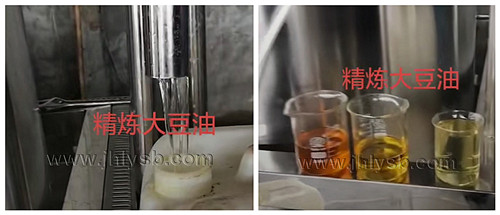 精炼大豆油