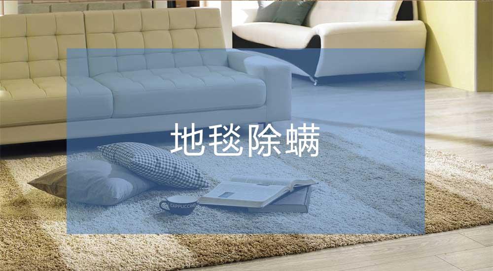 地毯除螨培训