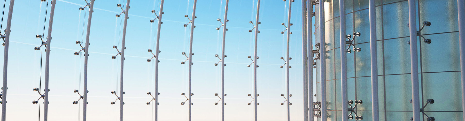 """玻璃幕墙居然成为了""""鸟类杀手"""""""