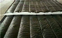 总结几点冬季大棚保温防冻经验