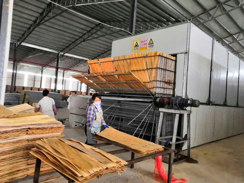单板烘干机-单板烘干设备-单板干燥机-木片烘干设备-木片烘干机