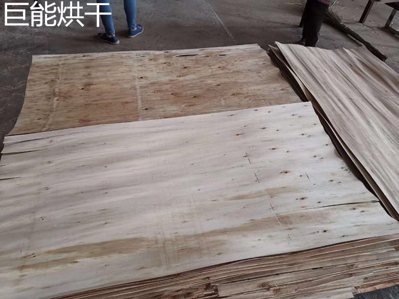文安县鑫巨能单板烘干机发货现场
