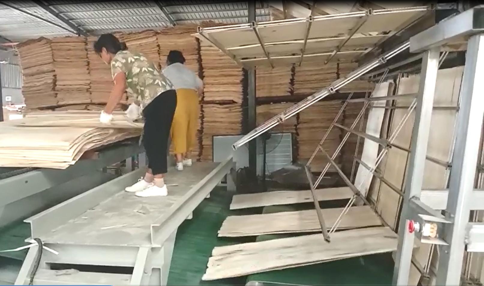 山东临朐巨能烘干设备有限公司上新产品--往复式单板烘干机