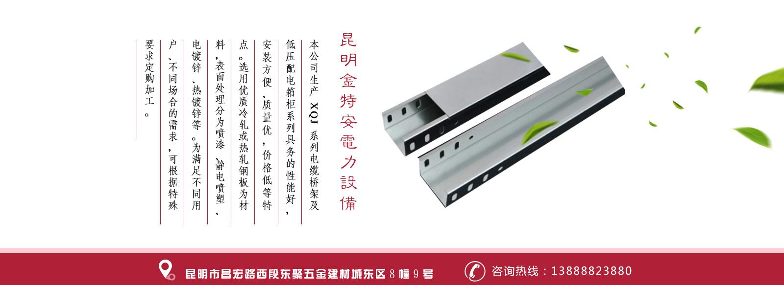 云南大跨距电缆桥架