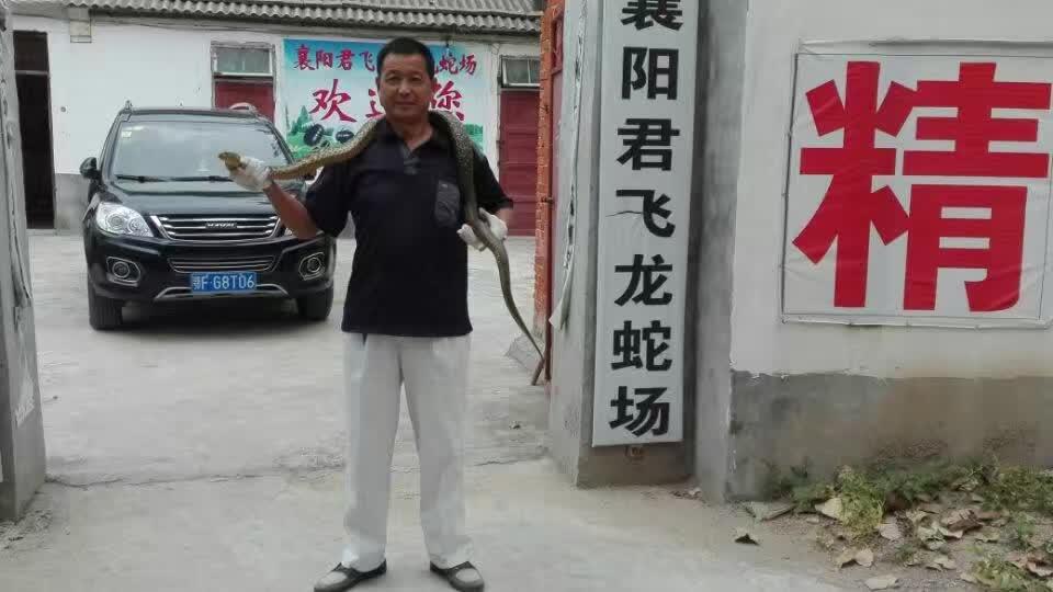襄阳君龙蛇类养殖场
