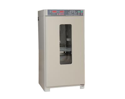 霉菌培养箱MJX-100B-Z