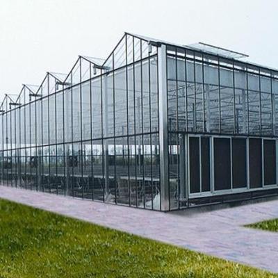 智能大棚玻璃温室
