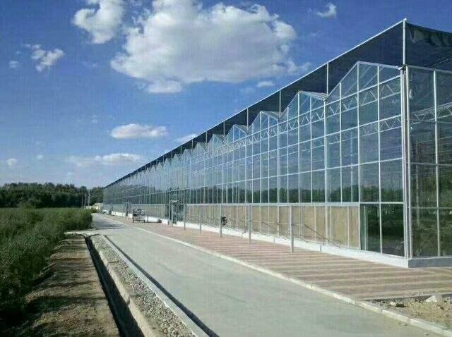 智能玻璃温室大棚