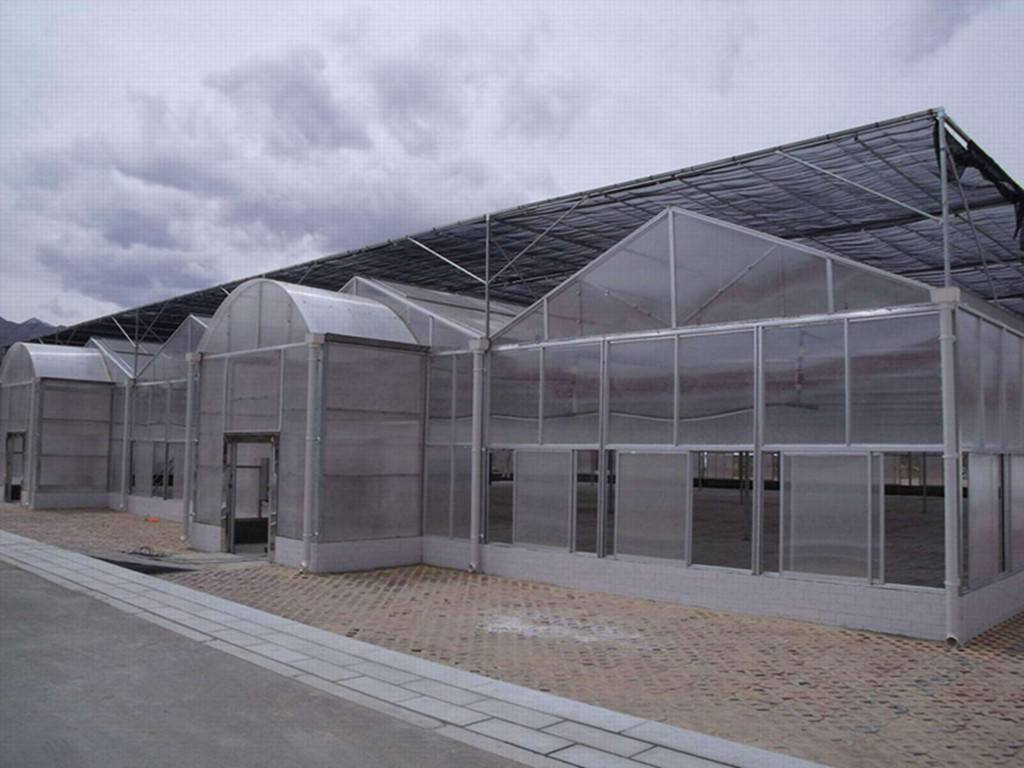 阳光板连栋温室