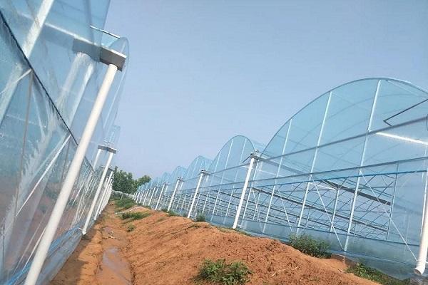 小型日光温室