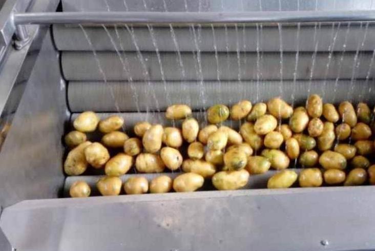 蔬菜清洗去皮机