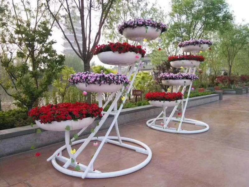 花卉租赁2