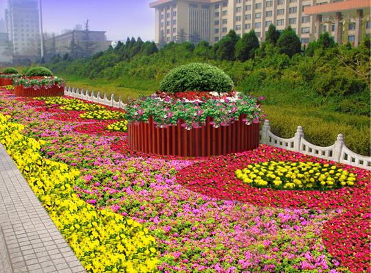 省政府绿化工程