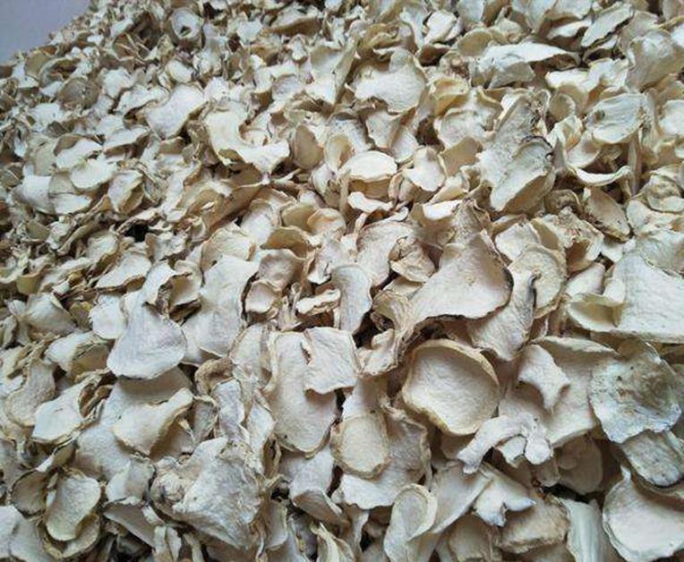 凯捷魔芋种植技术