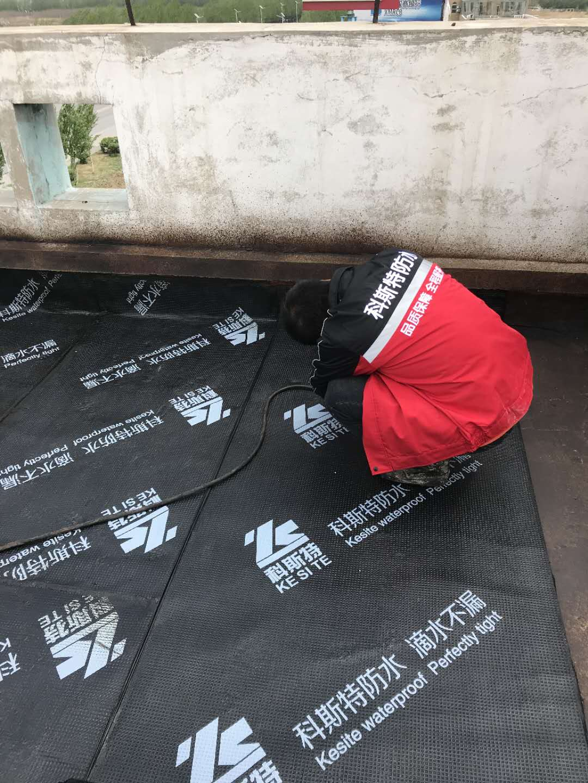 SBS改性沥青防水卷材厂家
