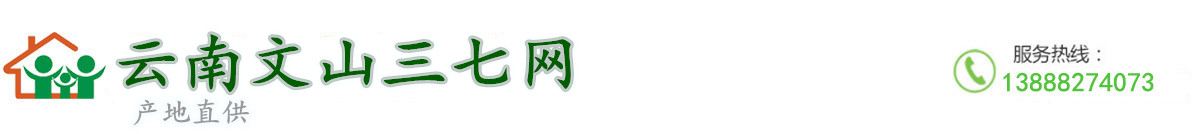 云南文山三七网
