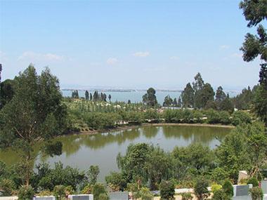 金宝山艺术陵园福园