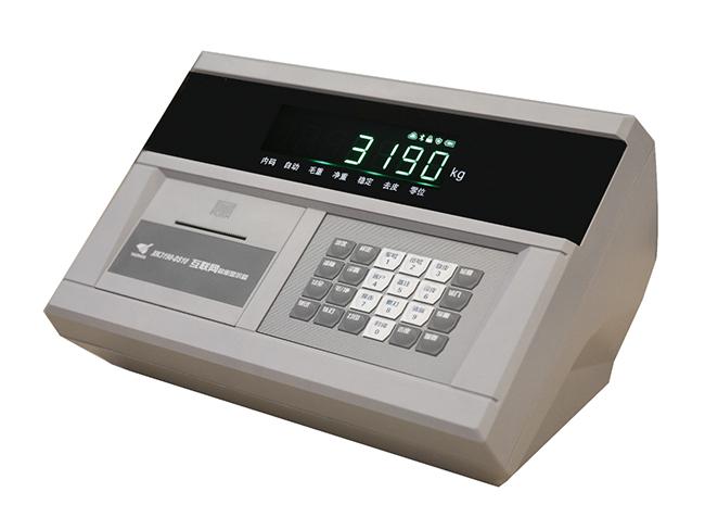 XK3190-DS10衡器仪表