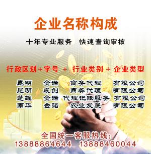 云南公司注册代办