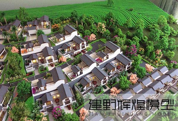 普洱茶林印象模型