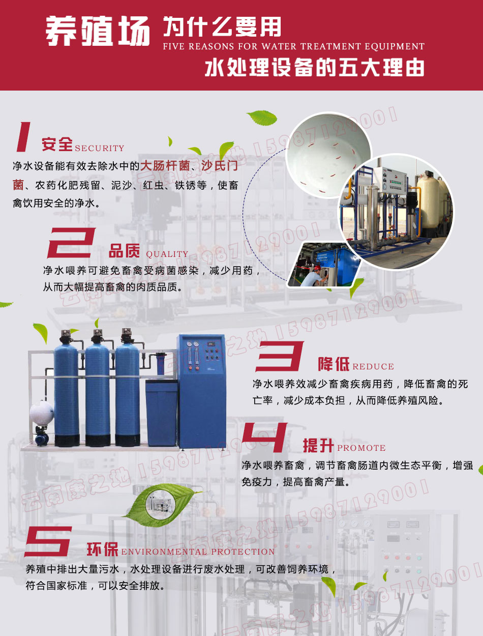 安宁蛋鸡养殖厂饮水处理设备