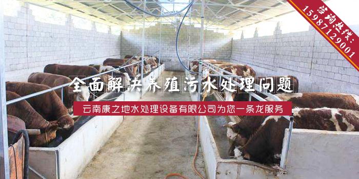 云南养殖污水处理设备