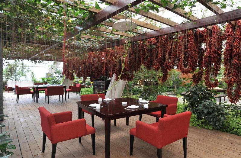 餐厅生态环境