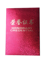 度假荣誉证书