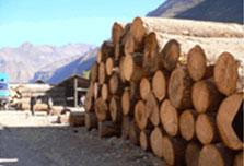 我公司帮助昆明林滨建材制品有限公司顺利通过ISO9001:2000质量管理体系认证,目前正在商谈森林认证事谊