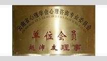 云南省心里學會心里咨詢專業委員會