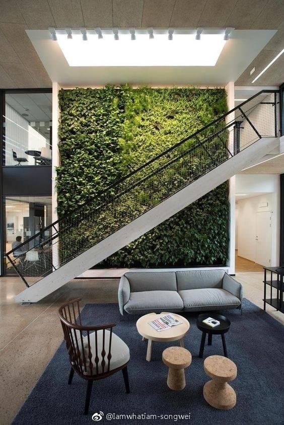 昆明室内绿植墙:室内植物墙是什么?本文详细讲解