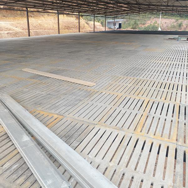水泥漏粪板安装