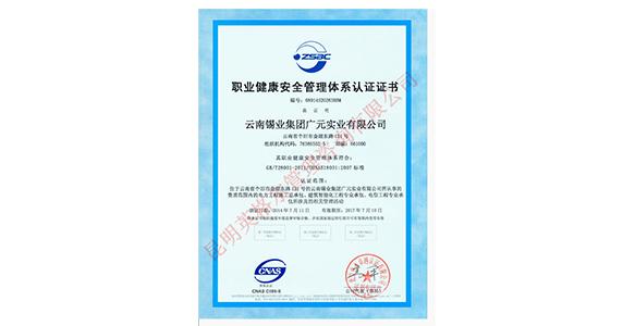 锡业健康管理体系认证证书