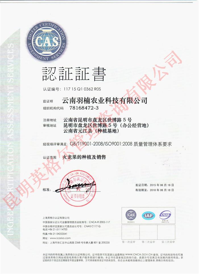 云南体系认证证书