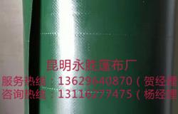 绿色PVC刀刮布