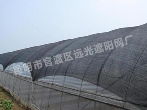 云南黑色三七种植遮阳网厂家