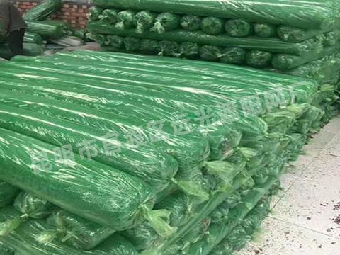绿色建筑盖土网