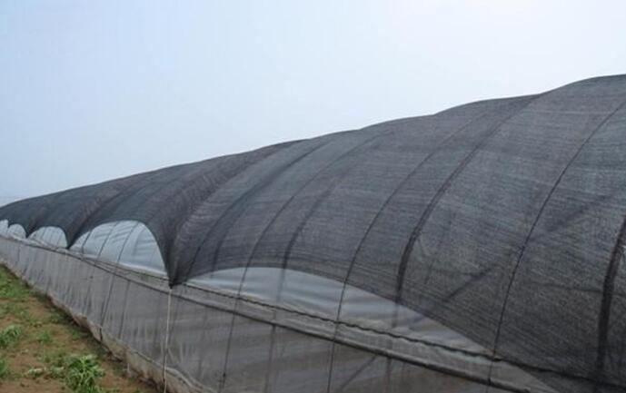 温室大棚遮阳网