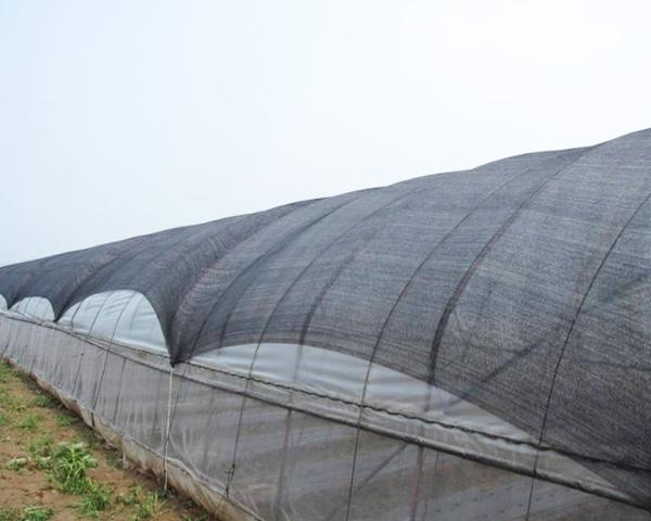 「塑胶遮阳网」选择合适遮阳网的方法