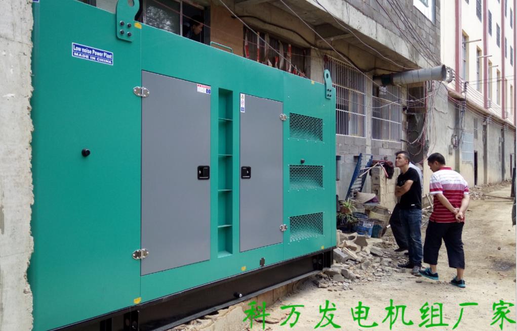 贵州某精神康复医院采购高端静音发电机组