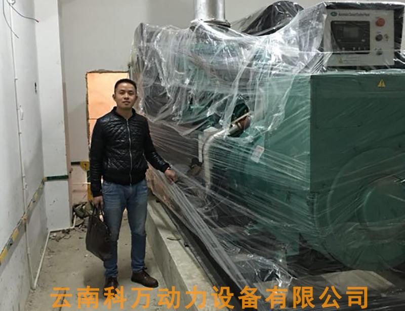 房地产备用电源600KW玉柴发电机组