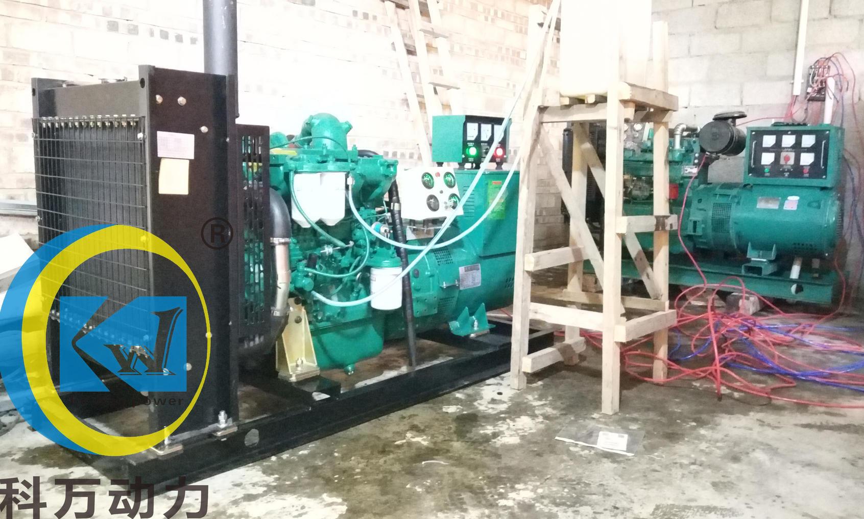 文山农牧业某屠宰场备用玉柴50kw发电机组