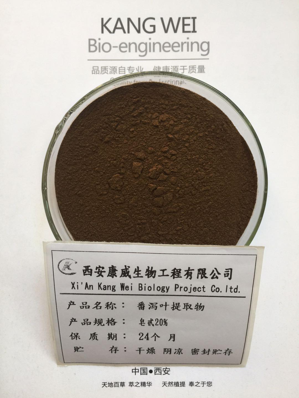 番泻叶提取物 皂苷20%