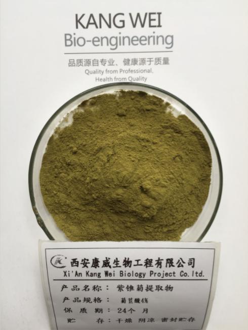 紫锥菊菊苣酸