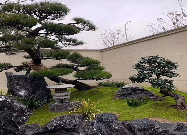 眉山庭院园林景观设计
