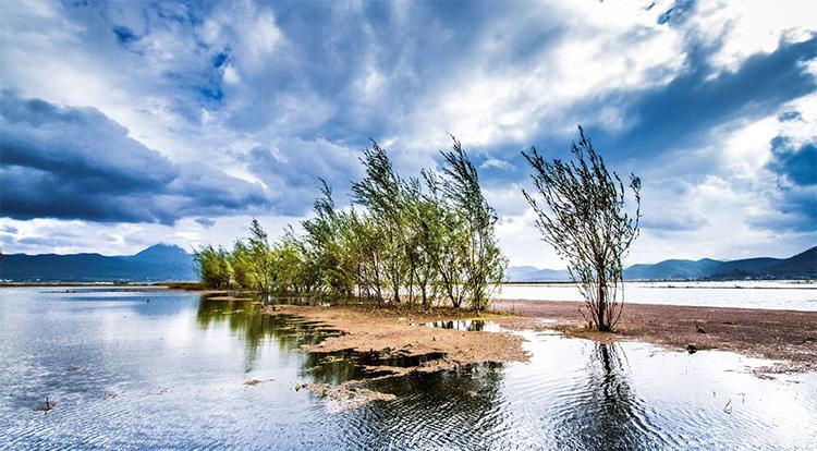 丽江拉市海湿地公园