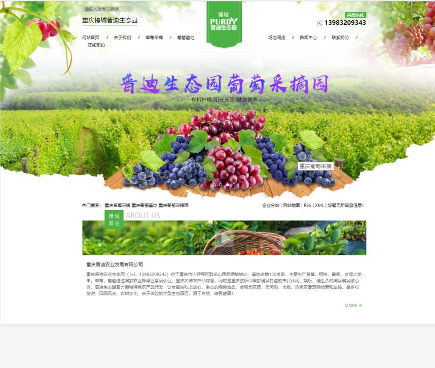 重庆农业网站建设