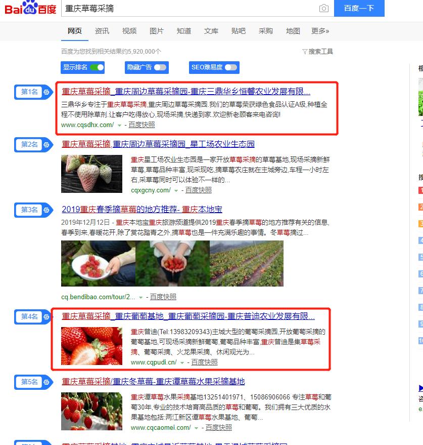 巴南农业企业网站制作排名情况—草莓采摘