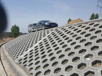 六角护坡砖案例展示